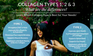 Collagen Types and Uses